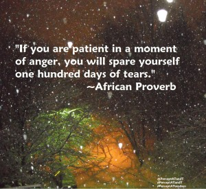 """If you are patient in a moment of anger, you will spare yourself one hundred days of tears.""- African Proverb"
